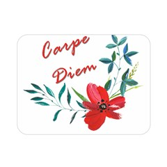 Carpe Diem  Double Sided Flano Blanket (mini)