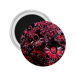 Amazing Glowing Flowers C 2 25  Magnets