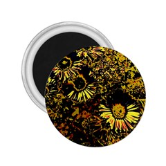 Amazing Neon Flowers B 2 25  Magnets