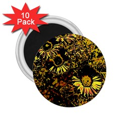 Amazing Neon Flowers B 2 25  Magnets (10 Pack)