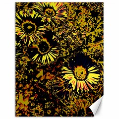 Amazing Neon Flowers B Canvas 12  X 16
