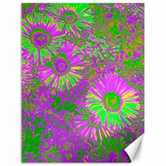 Amazing Neon Flowers A Canvas 12  X 16