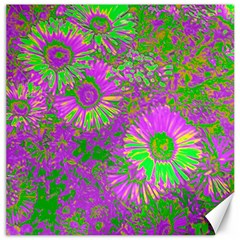 Amazing Neon Flowers A Canvas 16  X 16