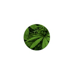 Marijuana Plants Pattern 1  Mini Buttons