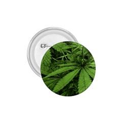 Marijuana Plants Pattern 1 75  Buttons
