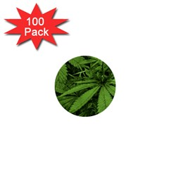 Marijuana Plants Pattern 1  Mini Buttons (100 Pack)