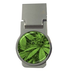 Marijuana Plants Pattern Money Clips (round)
