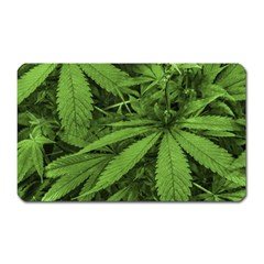 Marijuana Plants Pattern Magnet (rectangular)