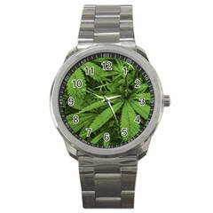 Marijuana Plants Pattern Sport Metal Watch