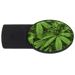 Marijuana Plants Pattern Usb Flash Drive Oval (4 Gb)