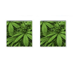 Marijuana Plants Pattern Cufflinks (square)