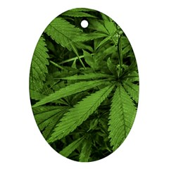 Marijuana Plants Pattern Oval Ornament (two Sides)