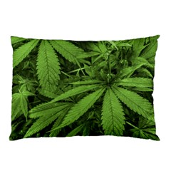 Marijuana Plants Pattern Pillow Case