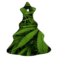 Marijuana Plants Pattern Ornament (christmas Tree)