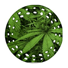 Marijuana Plants Pattern Round Filigree Ornament (two Sides)