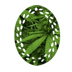 Marijuana Plants Pattern Oval Filigree Ornament (two Sides)