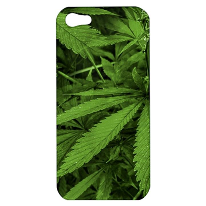 Marijuana Plants Pattern Apple iPhone 5 Hardshell Case