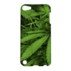 Marijuana Plants Pattern Apple Ipod Touch 5 Hardshell Case