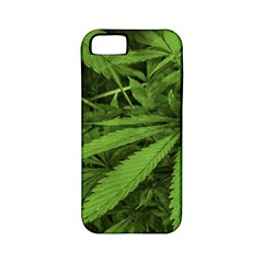 Marijuana Plants Pattern Apple Iphone 5 Classic Hardshell Case (pc+silicone)