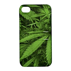 Marijuana Plants Pattern Apple Iphone 4/4s Hardshell Case With Stand