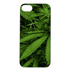 Marijuana Plants Pattern Apple Iphone 5s/ Se Hardshell Case