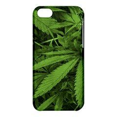 Marijuana Plants Pattern Apple Iphone 5c Hardshell Case