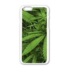 Marijuana Plants Pattern Apple Iphone 6/6s White Enamel Case