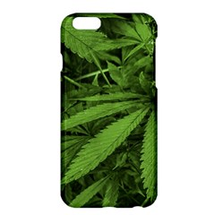 Marijuana Plants Pattern Apple Iphone 6 Plus/6s Plus Hardshell Case