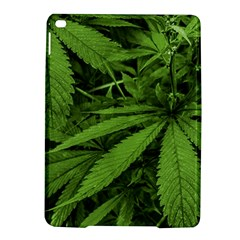 Marijuana Plants Pattern Ipad Air 2 Hardshell Cases