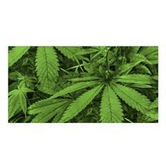 Marijuana Plants Pattern Satin Shawl