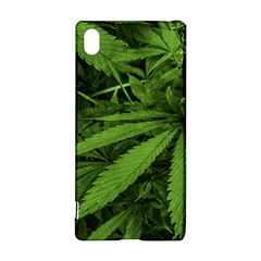 Marijuana Plants Pattern Sony Xperia Z3+