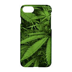 Marijuana Plants Pattern Apple Iphone 7 Hardshell Case