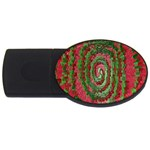 Red Green Swirl Twirl Colorful USB Flash Drive Oval (4 GB) Front