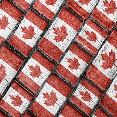 Canadian Flag Motif Pattern Canvas 16  X 16