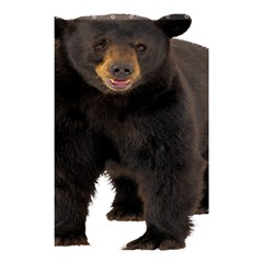 Brown Bears Animals Shower Curtain 48  X 72  (small)