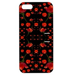 Pumkins And Roses From The Fantasy Garden Apple Iphone 5 Hardshell Case With Stand