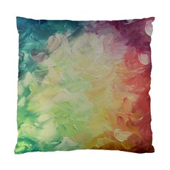 Painted Canvas                           Standard Cushion Case (two Sides)
