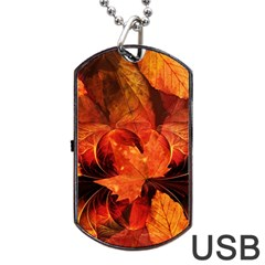 Ablaze With Beautiful Fractal Fall Colors Dog Tag Usb Flash (two Sides)