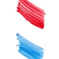 Tricolor Banner Watercolor Painting Art 5 5  X 8 5  Notebooks