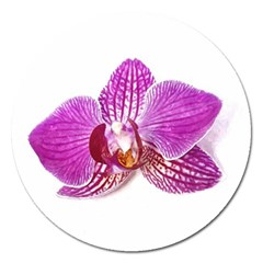 Lilac Phalaenopsis Aquarel  Watercolor Art Painting Magnet 5  (round)