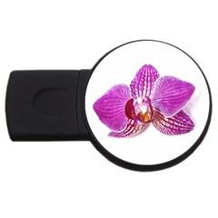 Lilac Phalaenopsis Aquarel  Watercolor Art Painting Usb Flash Drive Round (2 Gb)