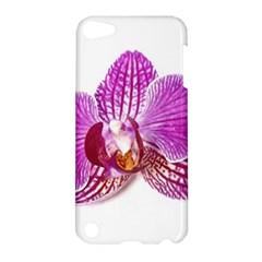 Lilac Phalaenopsis Aquarel  Watercolor Art Painting Apple Ipod Touch 5 Hardshell Case