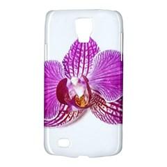 Lilac Phalaenopsis Aquarel  Watercolor Art Painting Galaxy S4 Active