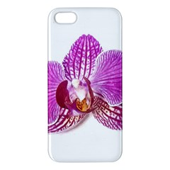 Lilac Phalaenopsis Aquarel  Watercolor Art Painting Iphone 5s/ Se Premium Hardshell Case