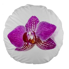 Lilac Phalaenopsis Aquarel  Watercolor Art Painting Large 18  Premium Flano Round Cushions