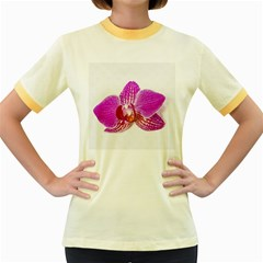 Lilac Phalaenopsis Flower, Floral Oil Painting Art Women s Fitted Ringer T Shirts