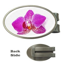 Lilac Phalaenopsis Flower, Floral Oil Painting Art Money Clips (oval)