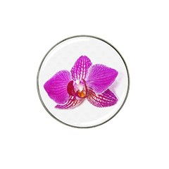 Lilac Phalaenopsis Flower, Floral Oil Painting Art Hat Clip Ball Marker (4 Pack)