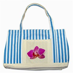 Lilac Phalaenopsis Flower, Floral Oil Painting Art Striped Blue Tote Bag