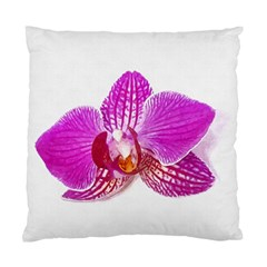 Lilac Phalaenopsis Flower, Floral Oil Painting Art Standard Cushion Case (two Sides)